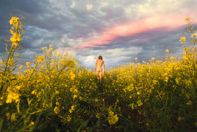 2012-mustard_meadow-reach_out_im_right_here-web-sm