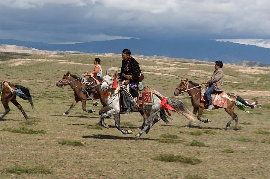 tibet-11024
