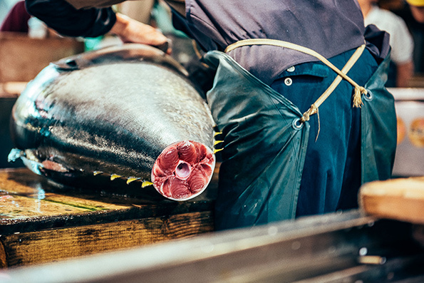 Nico-Tokyo-Fish-Market-itsnicethat-11