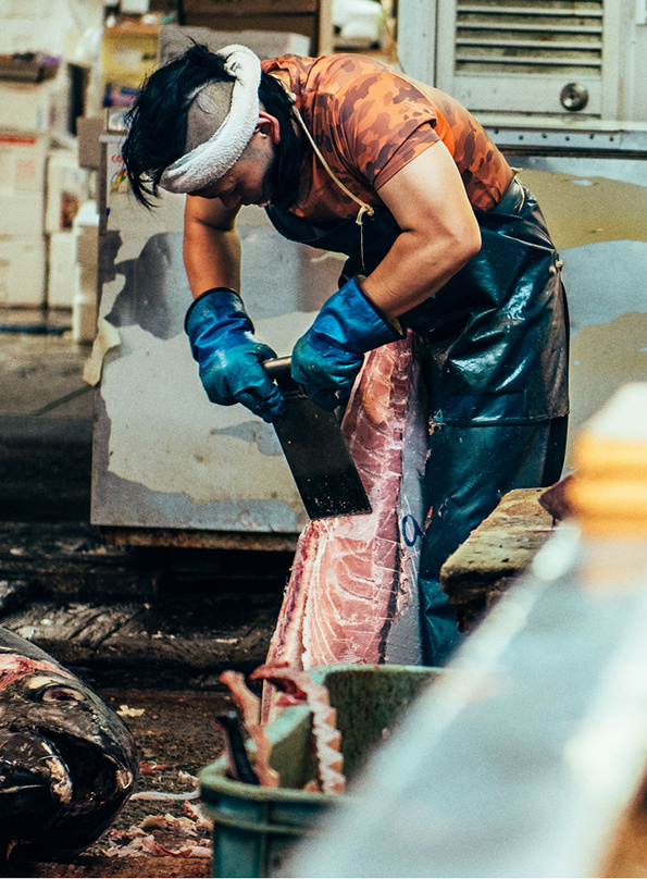 Nico-Tokyo-Fish-Market-itsnicethat-12
