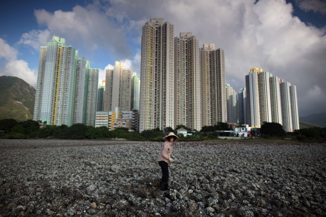 A woman digs for clams before high-rise apartments at low tide on Lantau island, Hong Kong on July 2, 2011. Whether for business or pleasure, the tradition of digging for clams is a regular draw for residents of Hong Kong's outlying islands. Bounty hunters prepared to spend hours hunched over barnacled rocks can expect a sure reward for their currency of clams from the ever-present nearby seafood establisments only too happy to serve up a hard-won catch. AFP PHOTO / ED JONES (Photo credit should read Ed Jones/AFP/Getty Images)