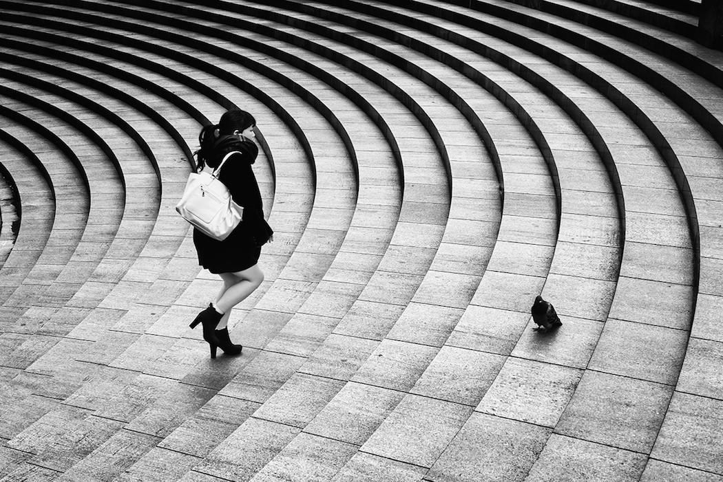 HiroharuMatsumoto_photography-dove-1050x701